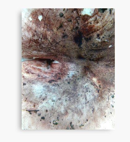 flesh #4 Canvas Print