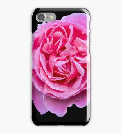 Large Pink Rose iPhone Case/Skin