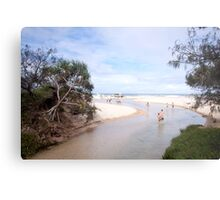 Eli Creek, Fraser Island Metal Print