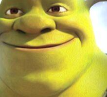 Shrek is Love, Shrek is Life. Sticker