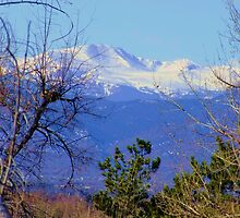 A View from Cherry Hills, The Rockies by Thomas Stevens