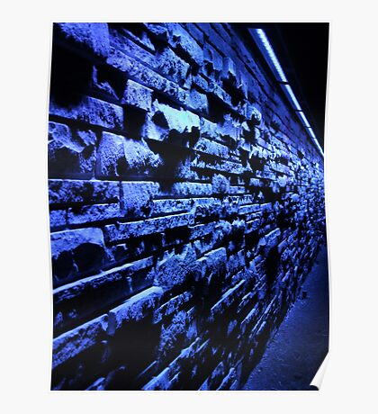 Blue Wall, Denver Botanic Garden Poster