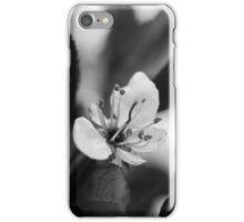 Black & White Cherry Blossom iPhone Case/Skin