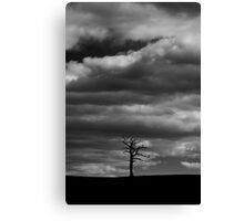 Under a lonely sky Canvas Print