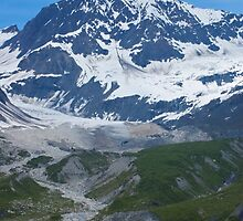 Glacier Bay Alaska  by Luann wilslef