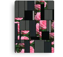Pink Roses in Anzures 2 Art Rectangles 7 Canvas Print