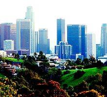 Los Angeles, my new home by loiteke