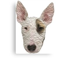 Bull Terrier II Canvas Print
