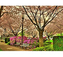 Spring day at the State Park Salem Oregon Photographic Print