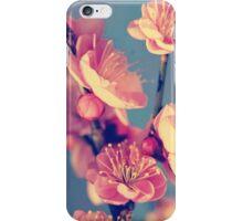 Flowers- retro flowers iPhone Case/Skin