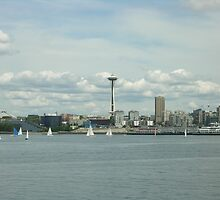 Seattle Space Needle Water View by Angela Fisher