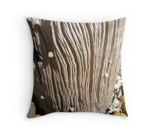 Post eroded by Sea water Throw Pillow