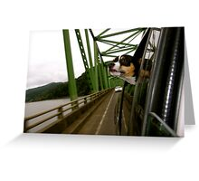 Dog Looking Out The Window in Oregon Greeting Card