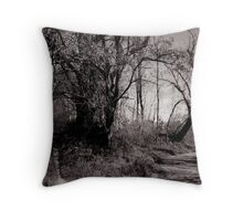 Foot Path and Bike Trail Throw Pillow