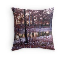 sunset on the frio Throw Pillow