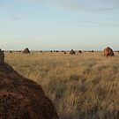 Termite Town 2 by Denny0976