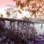 Stoney Creek Trestle Bridge by Roz McQuillan