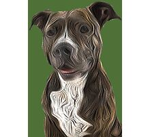 Pit Bull Terrier Oil Painting Style Photographic Print