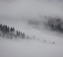 Smoke on the Mountain by Santa Tom Kliner