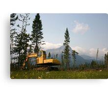 Logging Equipment Canvas Print