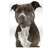 Pit Bull Terrier Oil Painting Style White Background Poster