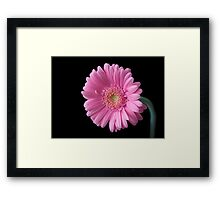 Me Alone Framed Print