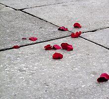 Venician Rose Petal by PrintsByTom