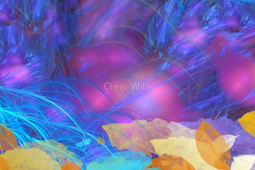 Bower Bird's Treasure by Chris  Willis