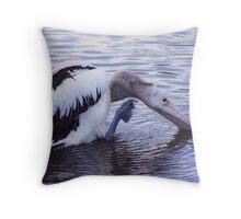 Pelican Scratching Head - Buderim - Qld Throw Pillow