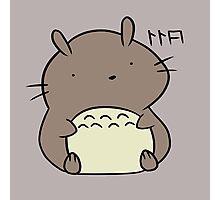 Totoro Hamster Photographic Print