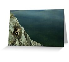 Acrophobia Greeting Card