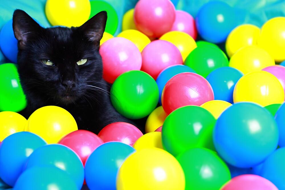 Puss in Balls by SRB1