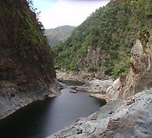 Baron Gorge, Cairns  by Paco  Murray