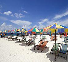 Tropical Beach by Dave Lloyd