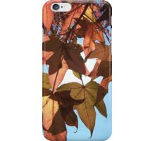 Autumn Leaves and Blue Skies.... iPhone Case/Skin
