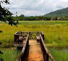 Cloudy sky on the rice field - Angkor, Cambodia. by Tiffany Lenoir