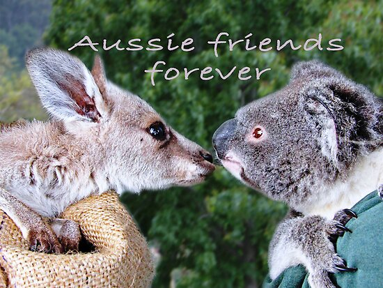 Forever Aussie Friends by Coloursofnature
