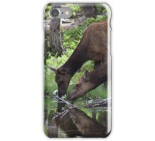 Two Elk Drinking iPhone Case/Skin