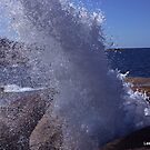 There she blows! by Lee Popowski