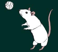 Volleyball Rat by teaandink