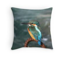 A COMMON KINGFISHER Throw Pillow