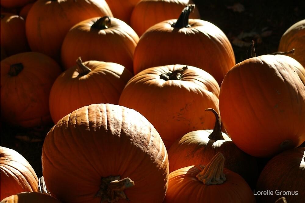 Pumpkins by Lorelle Gromus