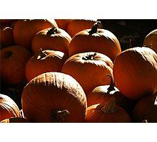 Pumpkins Photographic Print