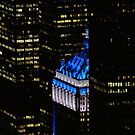 NYC in BLUE by Cristina C.p.Neumann
