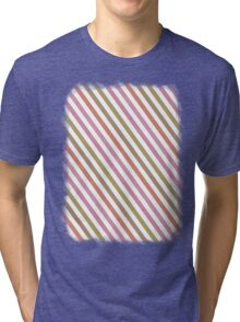 Pink Roses in Anzures 2 Stripes 1A Tri-blend T-Shirt