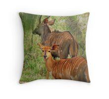 Nyala Antelope Throw Pillow