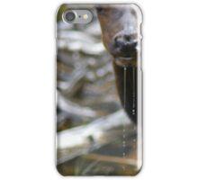 Elk drinking water iPhone Case/Skin