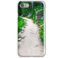 Path in Rocky Mountain National Park iPhone Case/Skin