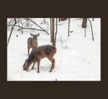 Young Spike Buck and Doe Whitetail Deer In Snowy Woods T-Shirt