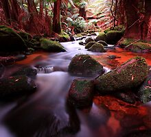 """Little Forester River-2"" by Husky"